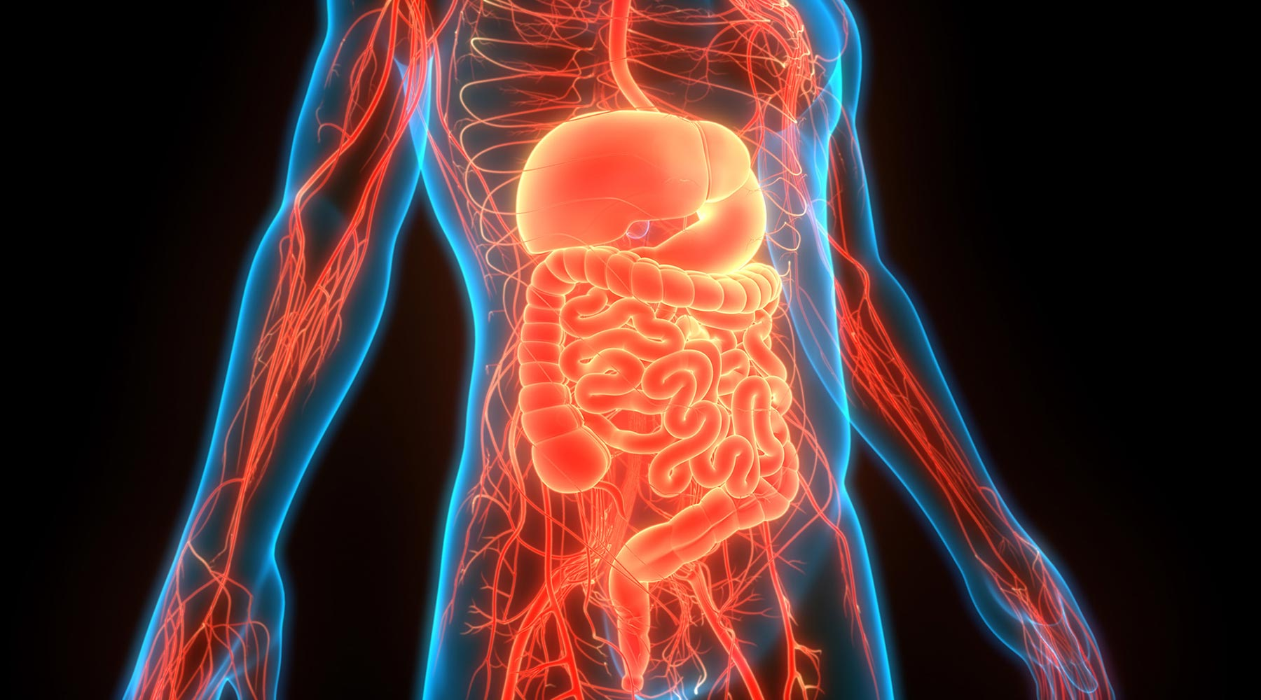 What Kind of Nurse Should You Be? Check Out the Growing Field of Gastroenterology